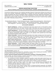 Business Development Resume Examples by Business Development Manager Resume Resume Badak