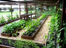 Garden Layout Software Landscaping Software Garden Pergola Pictures Landscape Design