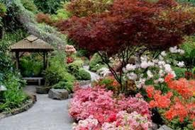 the butchart gardens victoria the japanese garden