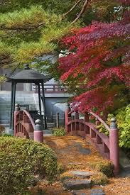 japanese garden ideas