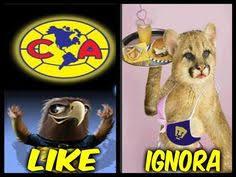 Memes De America Vs Pumas - memes de america vs pumas gato 2 jpg 625 417 quotes that i love