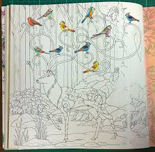 colouring walkthrough creating background enchanted forest