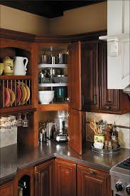 Kitchen Cabinet Pull Outs by Kitchen Pull Out Kitchen Cabinet Sliding Storage Shelves Wood