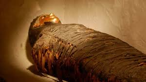 inside a what s inside a mummy peel back the layers history 7