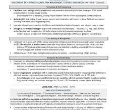 absolutely smart it resumes 11 it director sample resume resume