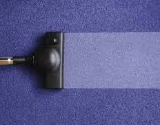 Upholstery In Fort Lauderdale Mr Steemer Carpet Cleaner 800 380 6965 South Florida Carpet