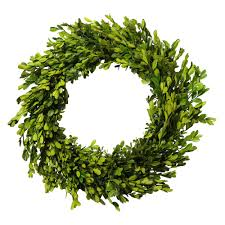 u0026 hannah 20 in artificial boxwood preserved wreath
