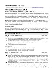 Holes Resume Executive Resume Sample