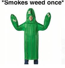 Weed Halloween Costumes 25 Memes Dont Smoke Weed Dont Smoke Weed Memes