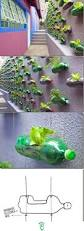 diy garden wall great pin for oahu architectural design visit