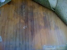 wood floor water damage repair tips