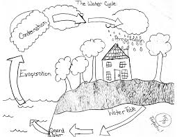 nitrogen cycle without labels label water cycle diagram best