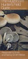 Are Backyard Mushrooms Poisonous 10 Edible And Poisonous Mushrooms And A Guide To Identifying