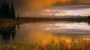 brilliant colors of denali national park alaska wallpapers amazing denali national park wallpaper 6896782