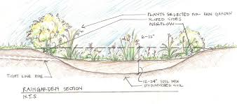 resource library 12 000 rain rain garden design best 25 rain garden ideas on pinterest