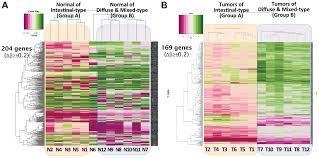 dna methylation status of a distinctively different subset of