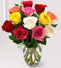 colored roses dozen mixed colored roses in elyria oh puffer s floral shoppe inc