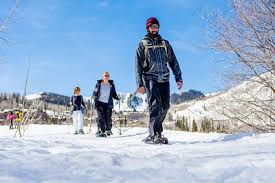 snowshoeing park city utah all seasons adventures scenic tours