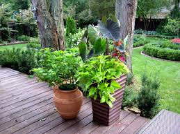 Outdoor Container Gardening Ideas Pictures Herb Garden Container 16 Fascinating Garden Container
