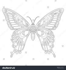 beautiful tropical butterfly page coloring book stock vector