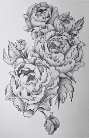 peonie tattoo design in black pencil drawn in august 2015 being