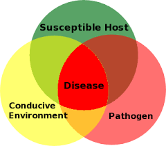 Plant Disease Control Methods - plant disease forecasting wikipedia
