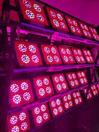vertical farming vegetables seeds led garden lighting coca seeds