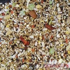 sunflower seeds u2013 rob harvey u0027s specialist feeds