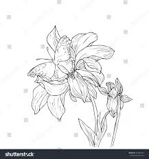 hand drawn vector flowers butterfly floral stock vector 340981889