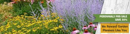 Garden Express Summer Catalogue - perennial plants u0026 gardens american meadows