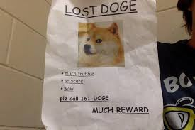 Lost Doge Meme - lost doge dog memes doge best of the funny meme