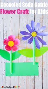 325 best rostliny images on pinterest spring flowers and diy