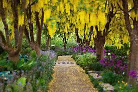 Vandusen Botanical Garden Wedding Vandusen Garden Engagement Sherman Phikyin Katya