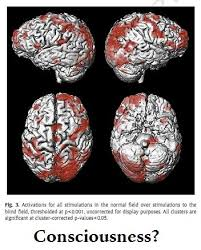 What Is Blind Sight Blindsight And Consciousness In The Brain Neuroskeptic