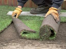 roll out vegetable garden how to lay sod hgtv