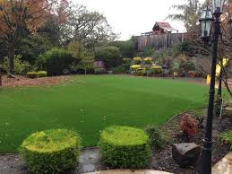 Florida Backyard Landscaping Ideas by Artificial Lawn Windermere Florida Design Ideas Backyard Ideas