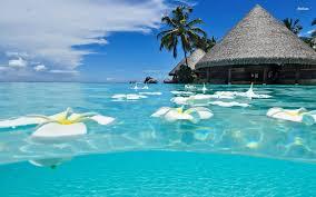 vacationgoals the best beach screensavers for summer 1