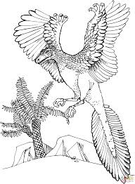 archaeopteryx jurassic bird coloring page free printable