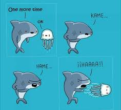 Funny Shark Meme - the shark and jellyfish are having fun album on imgur