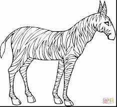 outstanding zebra clip art with zebra coloring page alphabrainsz net