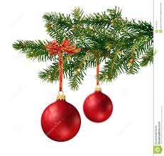 two glass balls on tree branch stock image image of