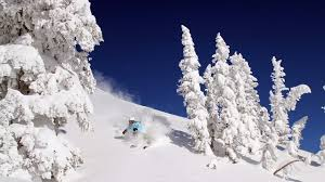 jackson central reservations jackson wyoming ski