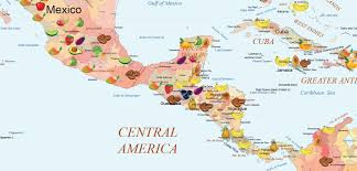 mexico in the world map the fruit world map special edition fruitworldmedia