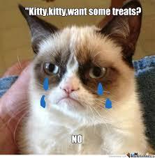 Sad Kitty Meme - sad kitty by magic moon meme center