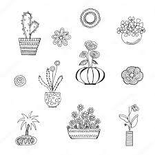 beautiful house plants u2014 stock vector dariayu 127970086