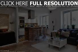 simple living room and kitchen ideas with additional home decor