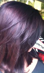 Red Hair Color With Highlights Pictures Best 25 Plum Highlights Ideas Only On Pinterest Plum Hair