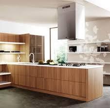 Kitchen Cabinets Veneer Astonishing With Kitchen Home Design - Kitchen cabinet veneers