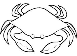 picturesque design crab coloring pages free printable crab