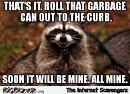 Raccoon Meme - funny plotting raccoon meme pmslweb